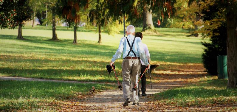 aktywność seniora