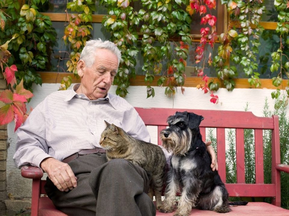 opieka nad seniorem ze zwierzętami