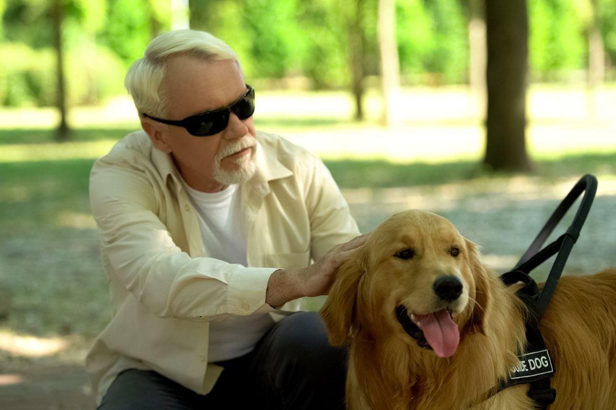 niewidomy senior